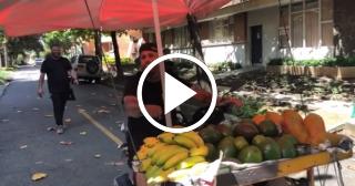 """Nicky Jam """"vende"""" aguacates por las calles de Colombia"""