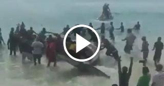 Así fue el rescate de una ballena en Brasil tras 20 horas de esfuerzos