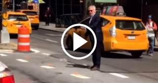 Sorprenden a Harrison Ford organizando el tráfico en una calle de Nueva York