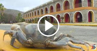 Hotel Costa Morena en Santiago de Cuba: un descanso ideal junto al Mar Caribe