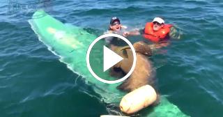 Un mero gigante vuelca la embarcación de dos pescadores en Florida