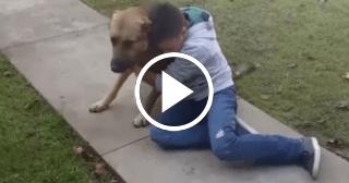 El emotivo reencuentro de un niño con su perro desaparecido por 8 meses