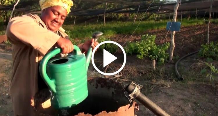 Inalvys: una cubana que lucha contra la sequía en Santiago de Cuba
