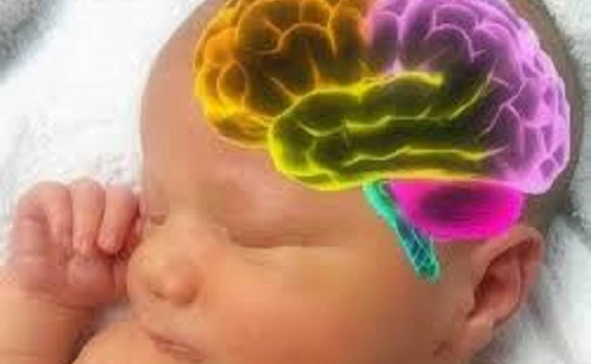 Diagnóstico temprano del autismo por cálculo del volumen del líquido cefalorraquídeo (LCR) por resonancia magnética