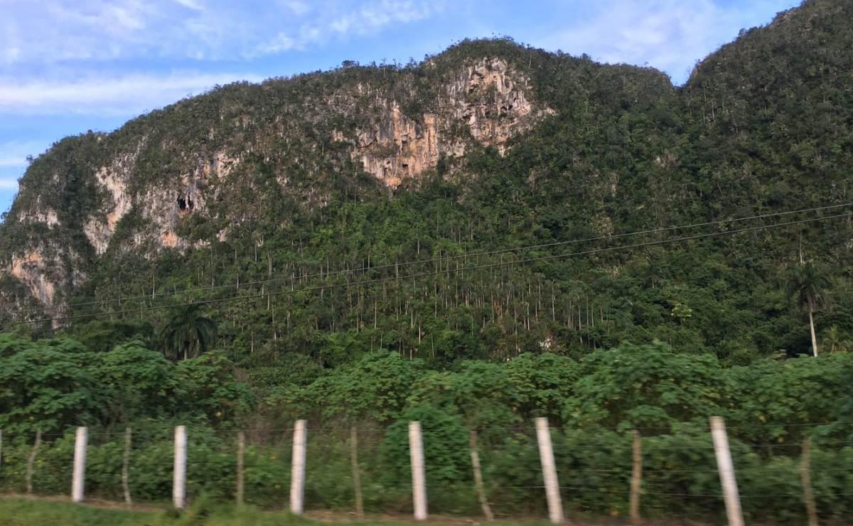 Cuba planea usar más de 200 áreas protegidas para el turismo de naturaleza