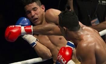 Domadores de Cuba pierden la corona en la Serie Mundial de Boxeo