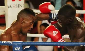 Arranca este martes la Zona Oriental de la IV Serie Nacional de Boxeo