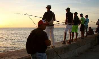 Cuba acuerda con la FAO combatir la pesca ilegal y no declarada