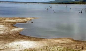 La FAO sugierea Cuba que busque soluciones