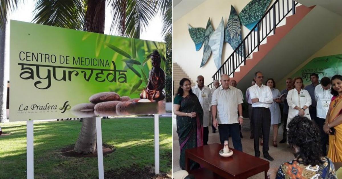 nueva medicina ayurvédica para la diabetes en india