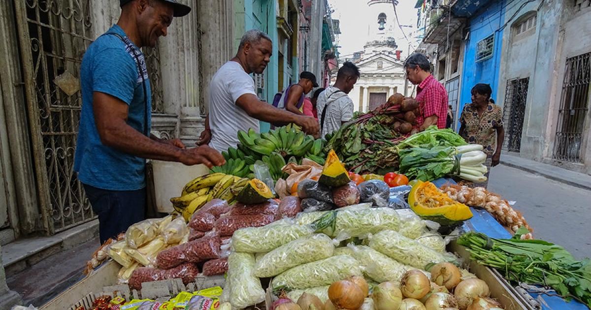 se pudre cosecha en Cuba
